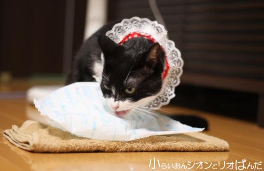 kawaii248.jpg
