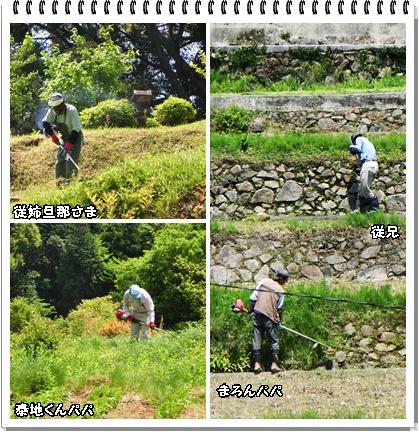 草刈り中~