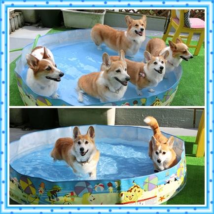 プールお開き