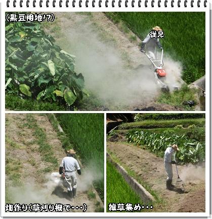 機械で畑作り