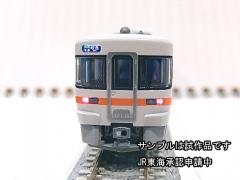 DSCN5371.jpg