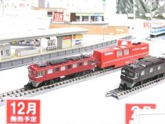 DSCN6091.jpg