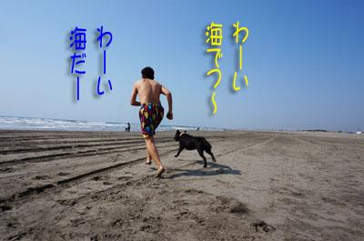 2016 片貝(13)