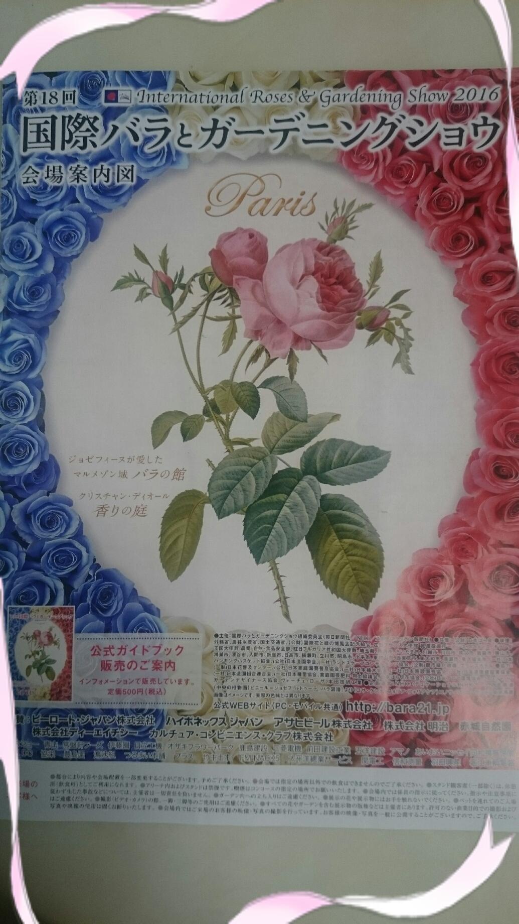 160610_roses_02.jpg