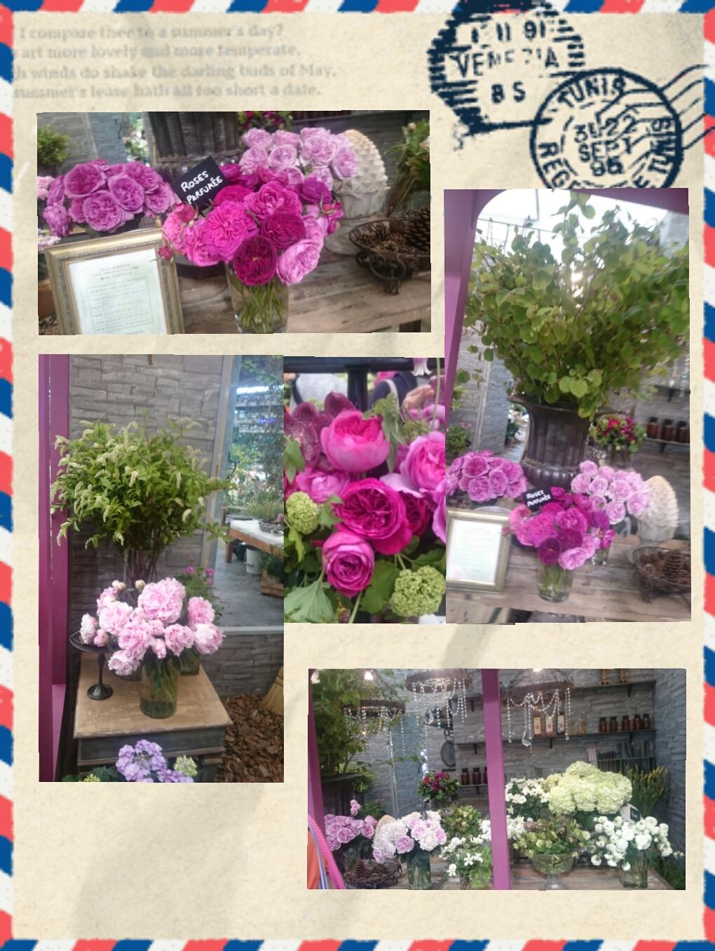 160610_roses_08.jpg