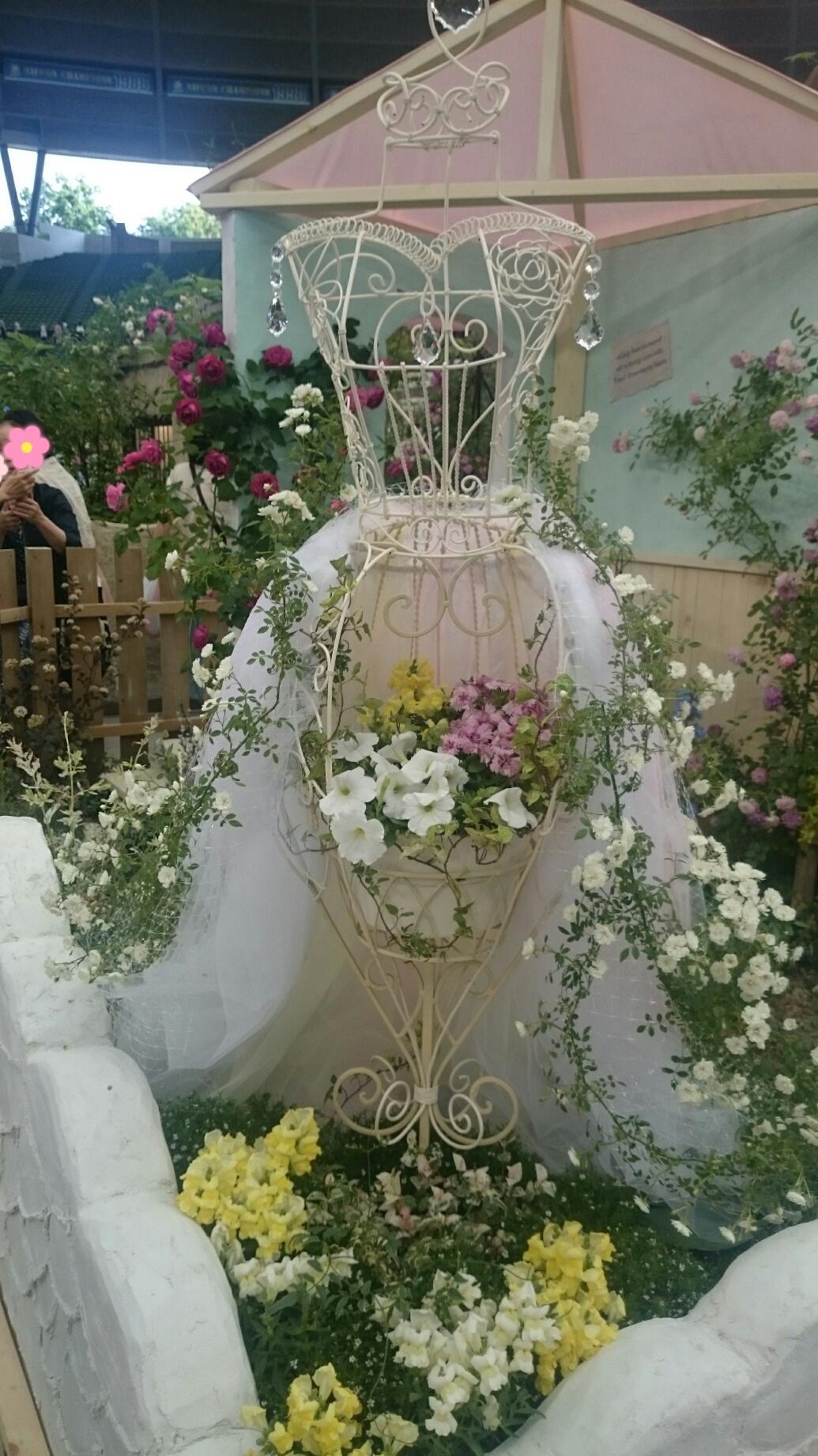 160610_roses_09.jpg