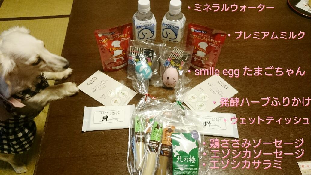 160808_kizuna2_07.jpg