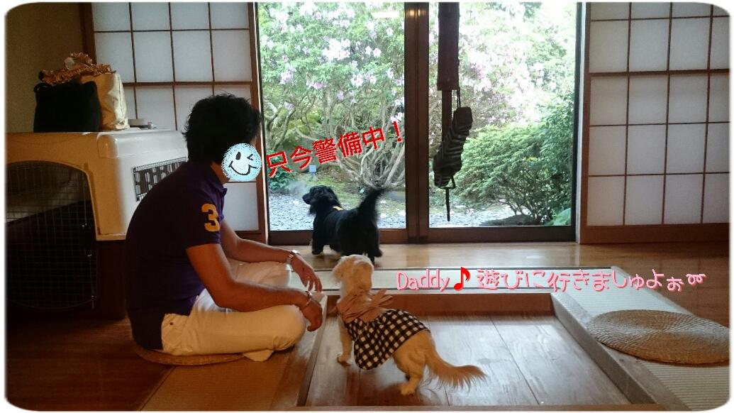 160824_kizuna3_03.jpg