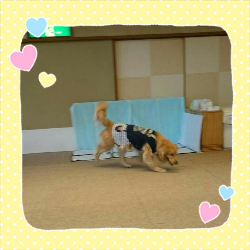 160824_kizuna3_06.jpg