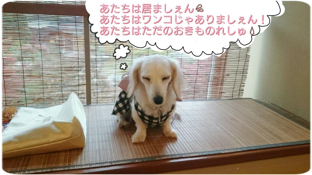 160824_kizuna3_07.jpg
