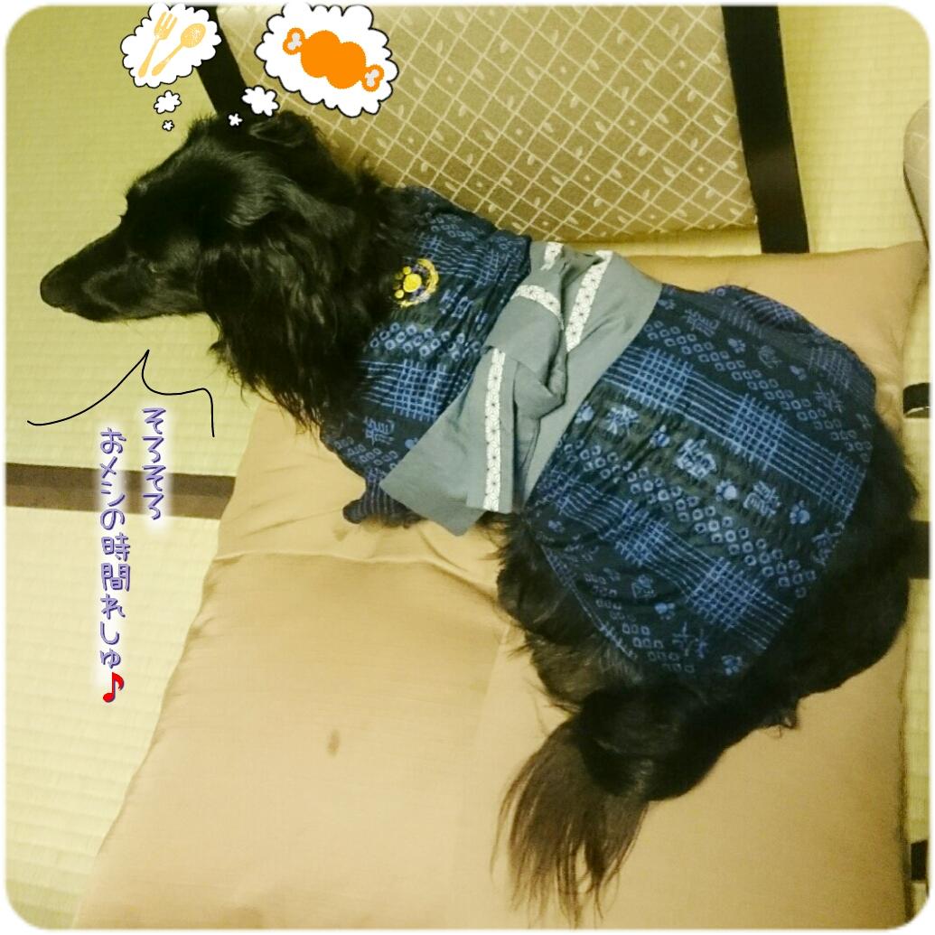 160824_kizuna3_15.jpg