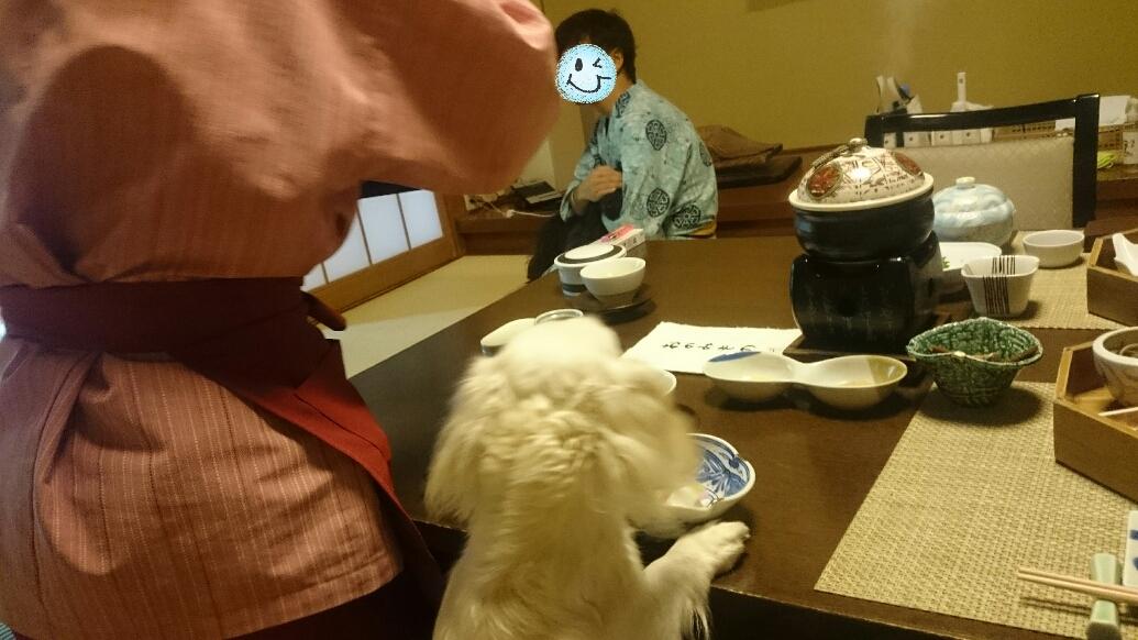 160831_kizuna4_07.jpg