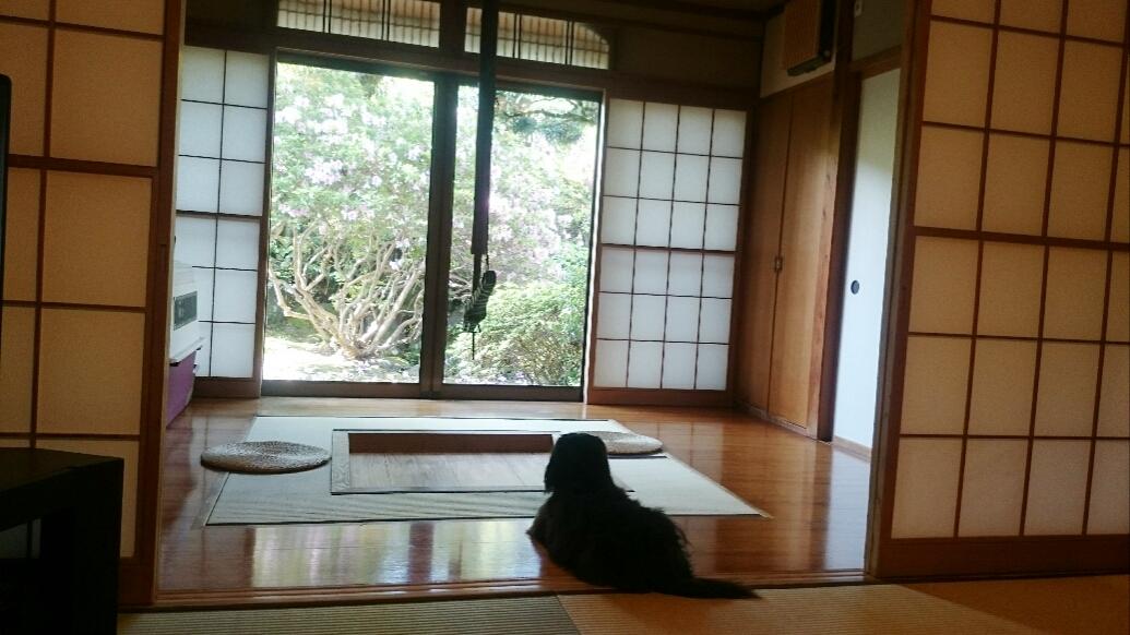 160831_kizuna4_10.jpg