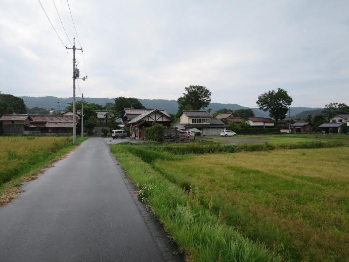 橋本牧場3