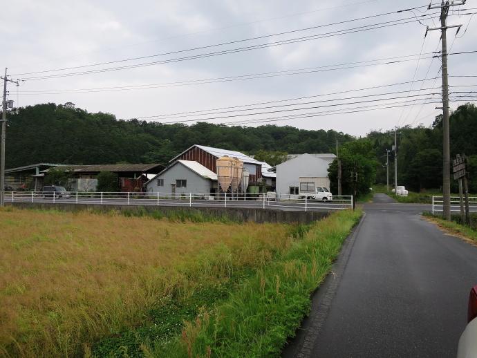橋本牧場4