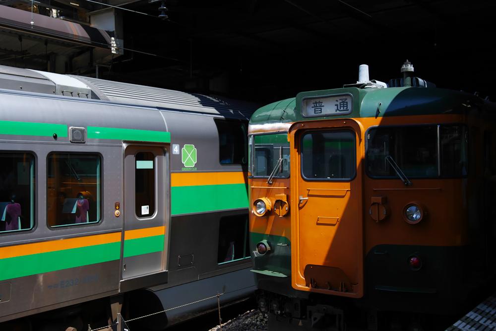 SDIM0201.jpg