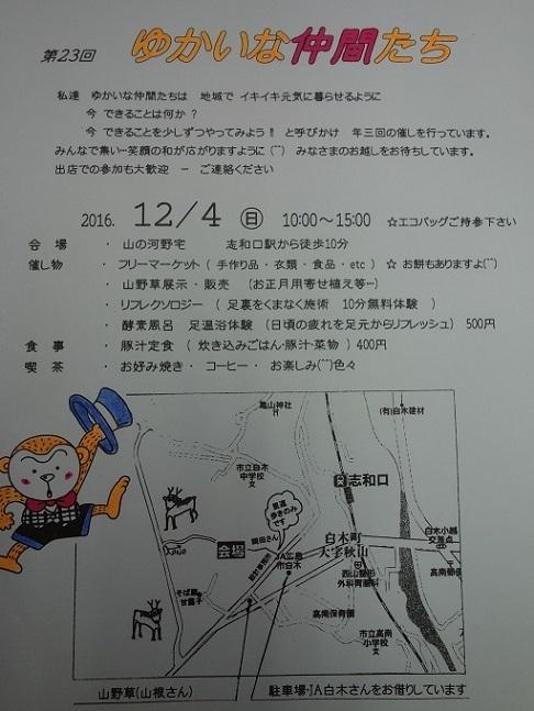 DSC06737.jpg