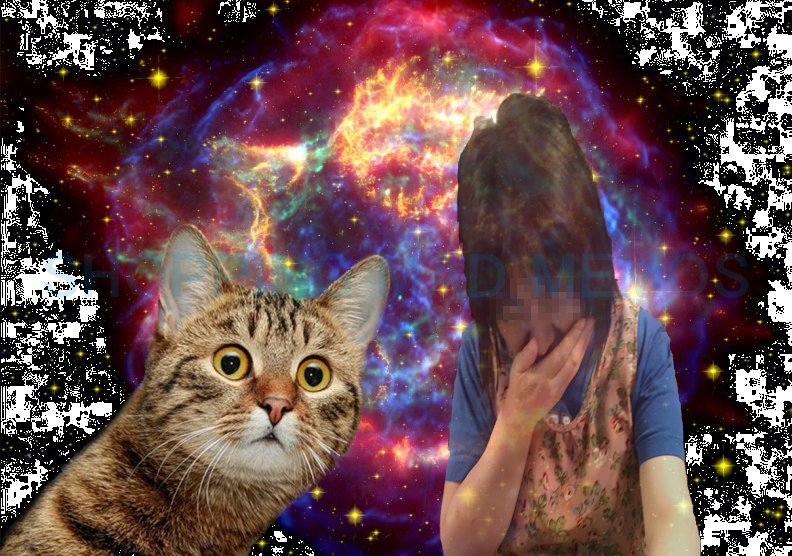 s-cat1.png