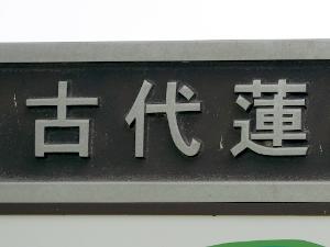 20160731_20.jpg