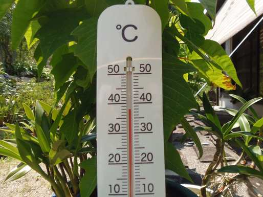 20160810 猛暑日