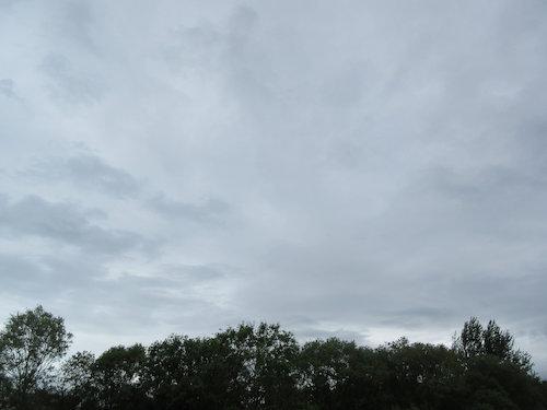 16.06.14.つれづれ