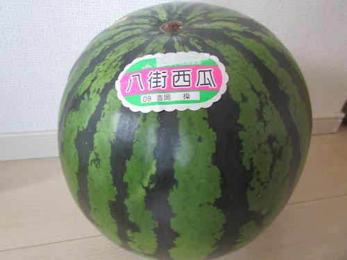 16.06.20.つれづれ1