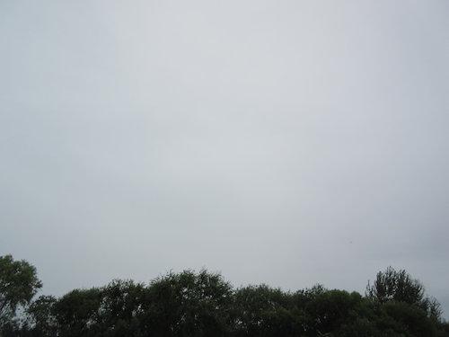 16.08.31.つれづれ