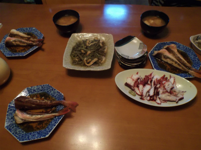 4.16夕食