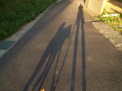 5.16マルと散歩2