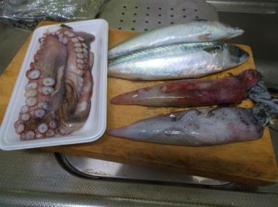 6.18買って来た魚