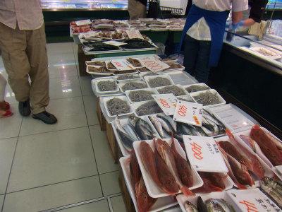 9.10魚が並び出した1