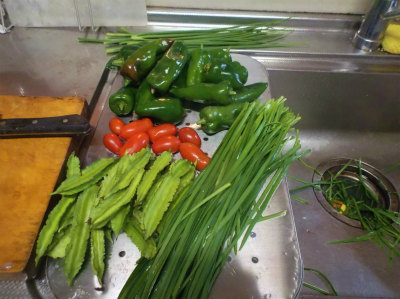 10.9収穫した野菜1