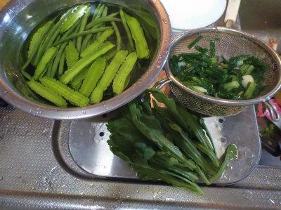 10.22自家製野菜