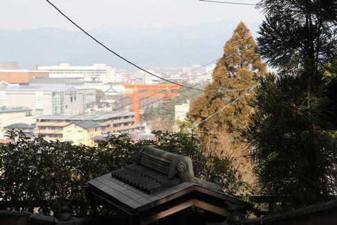 尊勝院・参道から見える風景_H28.03.02撮影