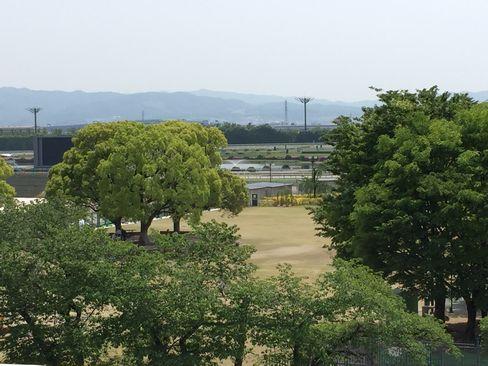 京都競馬場_H28.05.02撮影