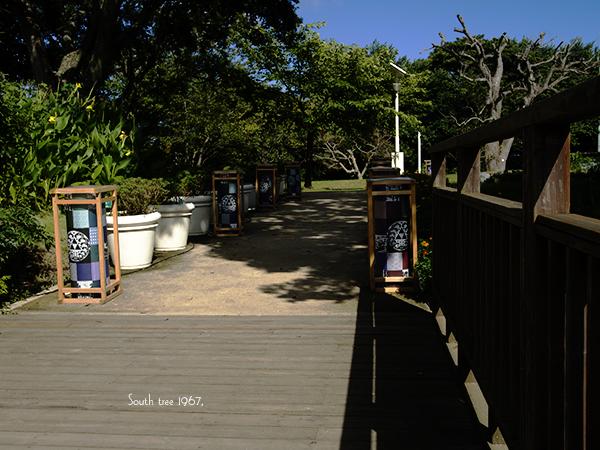 20160819江の島ブログ用4