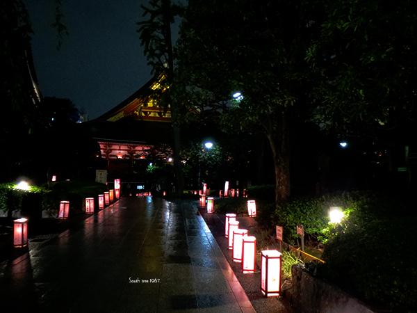 20160919浅草灯籠会ブログ用4