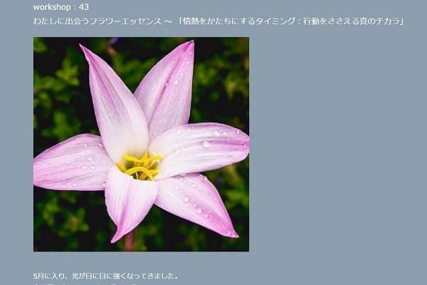 20160508_01mahina ws_s