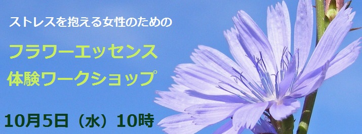 chicory-1428776_FB_event page_文字