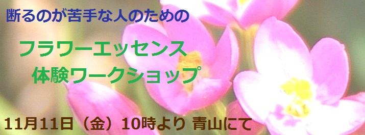 ☆11_5_告知Photo_0_715x265