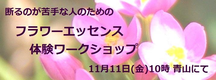 00☆11_5_告知Photo__715x265