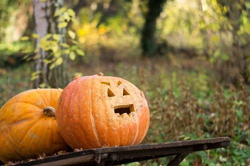 pumpkin05s.jpg