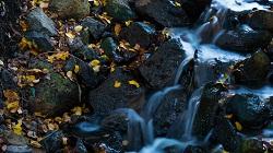 rock_water_250x.jpg