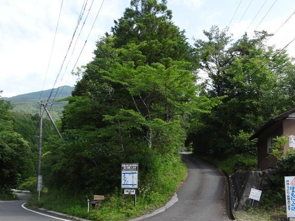 kasagi20160611-1_convert_20160624131026.jpg