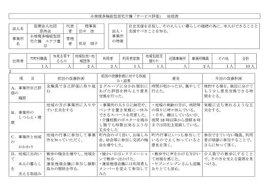サービス評価総括表2-1-30