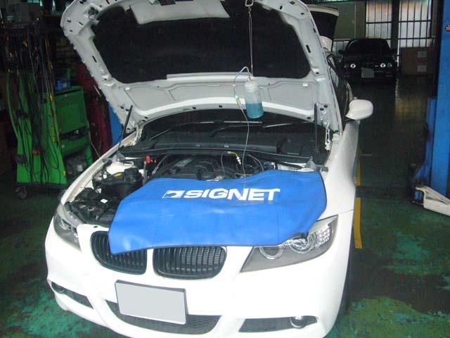 P1020067.jpg