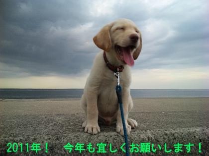 20110101_1766844.jpg