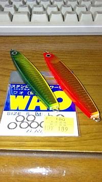 20110130_1933652.jpg