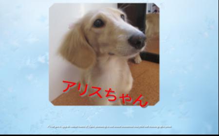 繧「繝ェ繧ケ_convert_20160805175531