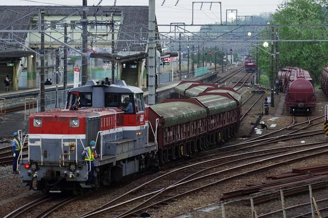 IMGP3165.jpg